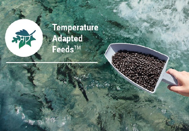 Aller Aqua Temperature Adapted feeds