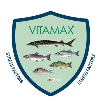 Aller Vitamax prevents oxidative stress in fish